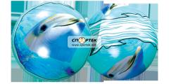 Ball children's Dolphin model: DS-PP-010.