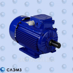 AIR280M2 132 electric motor of kW / 3000об common