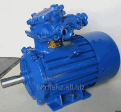 The AIU160S4 IM1081 electric motor explosion-proof