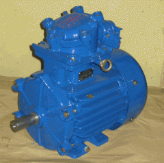 The AIMM 90 L6 IM1081 electric motor for chemical,