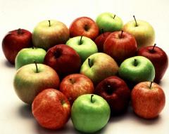 Apples ripe, tasty, different grades.