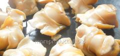 Rapana meat fresh-frozen bleached