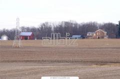 Earth of a farm