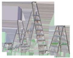 Aluminum step-ladder of ITOSS