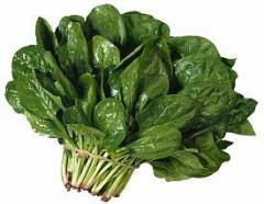 Spinach pass (baby spinach) fresh