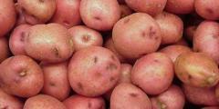 Картофель,лук,морковь,свекла