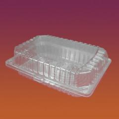 Container Code 2234, plastic with the undivided