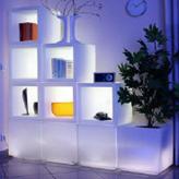 Regiments, the shelf with illumination, the shelf