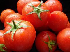 Томат Дональд, купити томат без ГМО, помідор