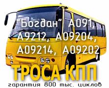 Bus Bogdan