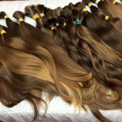 Волос  славянский южнорусский  опт