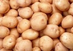 Картофель в сетках по 20 кг