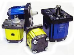 Pumps gear in assortmen