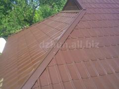 Elements of overhead panels for roofing