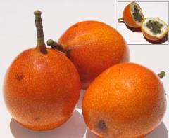 Granadilla passionflower seeds