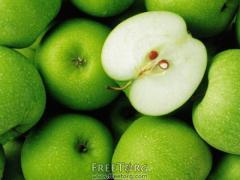 Саженцы яблони (зимние)