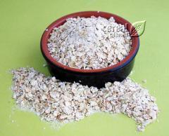 Buckwheat flakes