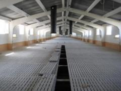 Slot-hole concrete floors for pigsties