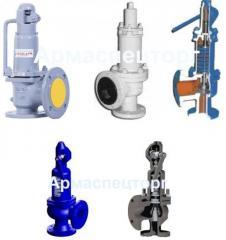 Safety valve Du100/125