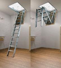 Ladders are mansard