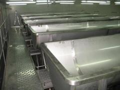 Curd vats