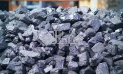 Coal large n