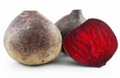 Fodder beet, fodder beet to buy, fodder beet