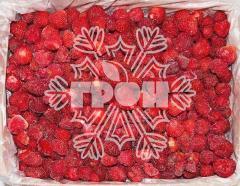 Strawberry (premium) frozen