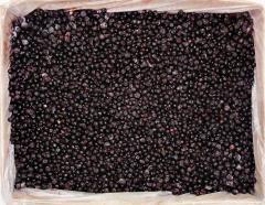 The bilberry frozen