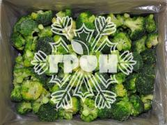The cabbage of broccoli frozen - Dnipropetrovsk