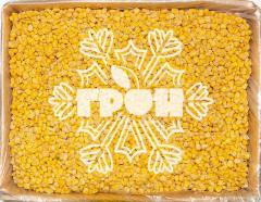 Corn grain frozen