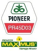 PR45D03/PR45D03 colsa hybrids