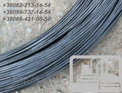 X20H80-H nichrom, ø1,0мм wire