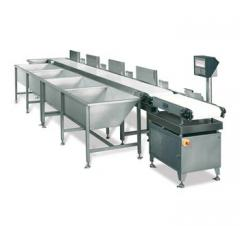 Conveyor sorting and sorting systems