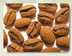 The NADINE, NADIN coffee beans in grains in cocoa