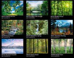 Ready Swiss photowall-paper of