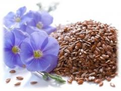 Flax meal wholesale