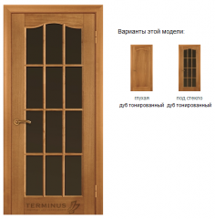 Двери межкомнатные стеклянные Classic: Модель 02 дуб тонированный