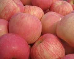 Fudzhi's apples