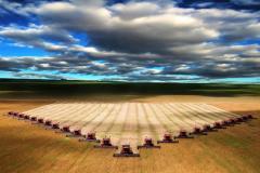 Farmer hoz-in 8000 hectares 0(95)7806643 Fyodor