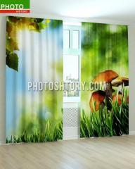 Фотошторы изображение грибы