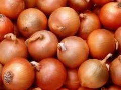 I will sell Onion 2 grades wholesale