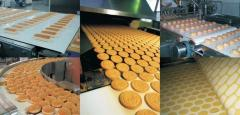 Food conveyer belts with the fabric working
