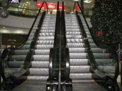 Escalators four of floor-by-floor (EDS) according