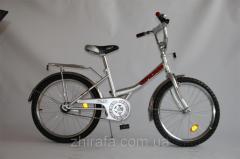 Велосипед EXPLORER 20 BT-CB-0038 серебряный