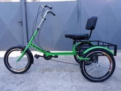 """Tricycle for rehabilitation, """"The small"""