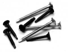 The self-tapping screw with a drill on...