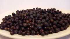 Dara Karpat, juniper Berry Ukraine