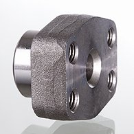 Screw counterflange of SAE, BSP - GFS G M