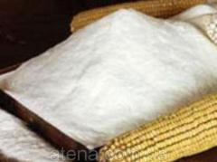 Corn starch price